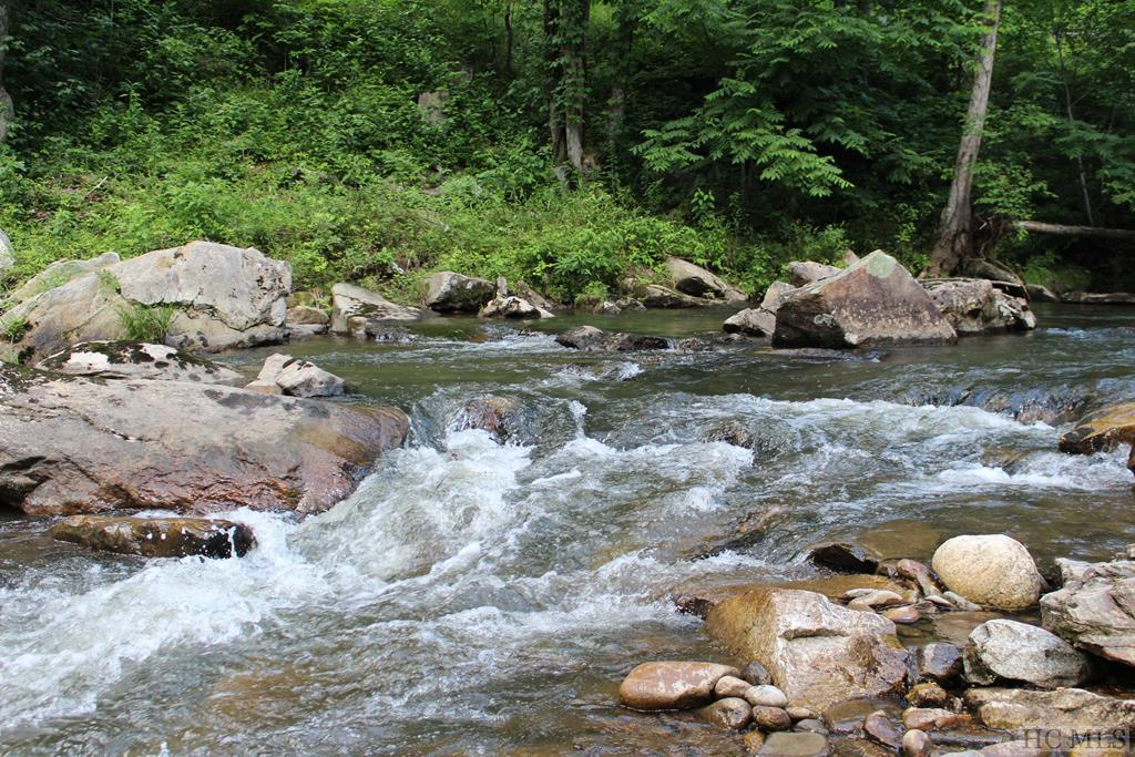 Photo of home for sale at Lot 2 Waterdance Drive, Tuckasegee NC