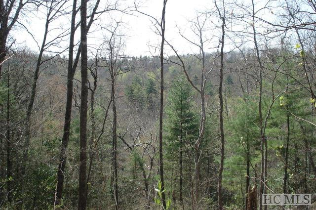 Photo of home for sale at Lot 79 Parsons View, Cashiers NC