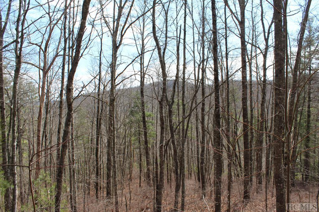 Photo of home for sale at 122 Ell Ridge, Glenville NC