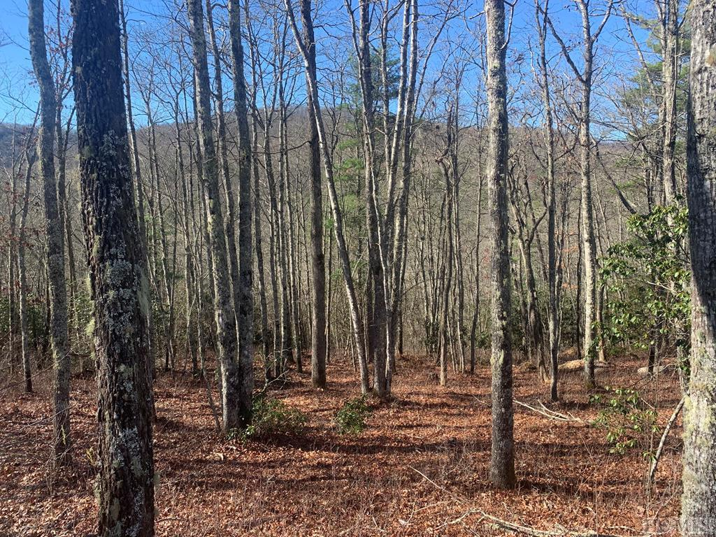 Photo of home for sale at Lot 107 Crippled Oak Trail, Glenville NC