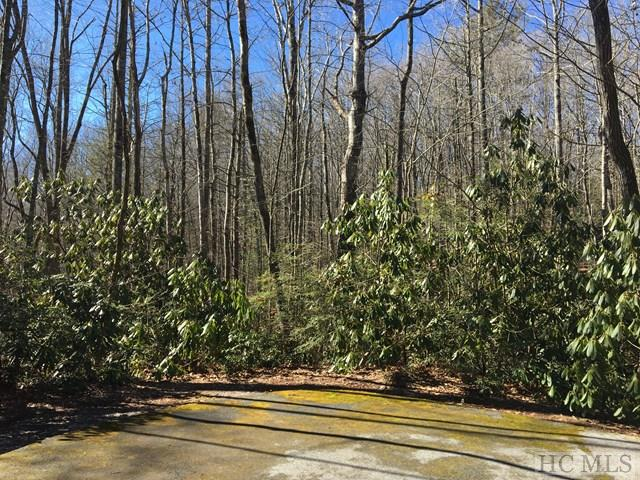 Photo of home for sale at Lot 12 Ash Court, Sapphire NC