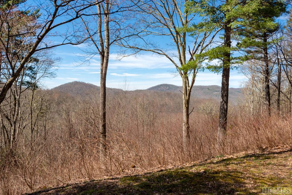 Photo of home for sale at 271 Clayson Drive, Cullowhee NC