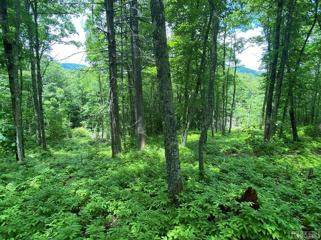 Photo of home for sale at Lot 98 Blazing Star Drive, Glenville NC