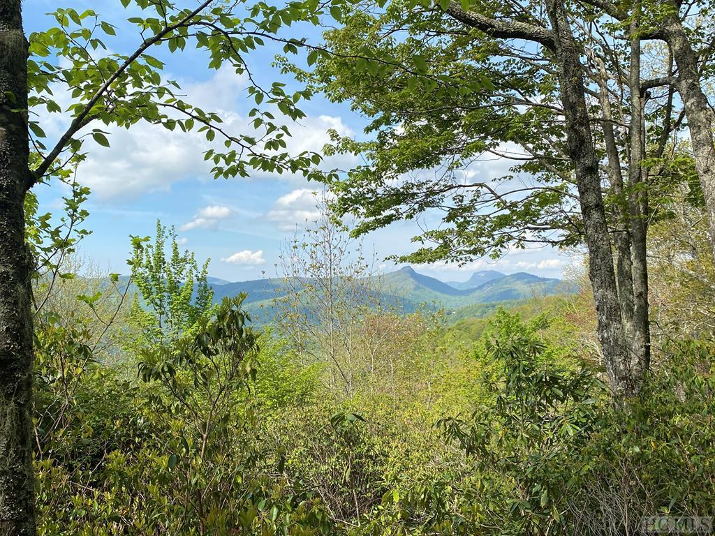 Photo of home for sale at Lot 3 Yarak Drive, Sapphire NC