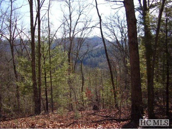 Photo of home for sale at Lot 17 Glen Laurel Lane, Cullowhee NC