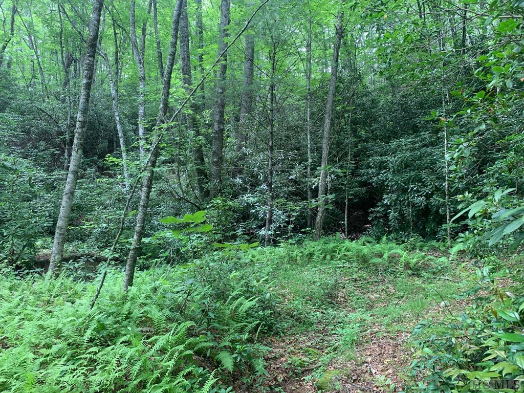 Photo of home for sale at Lot 4 Shirley Pressley Road, Glenville NC