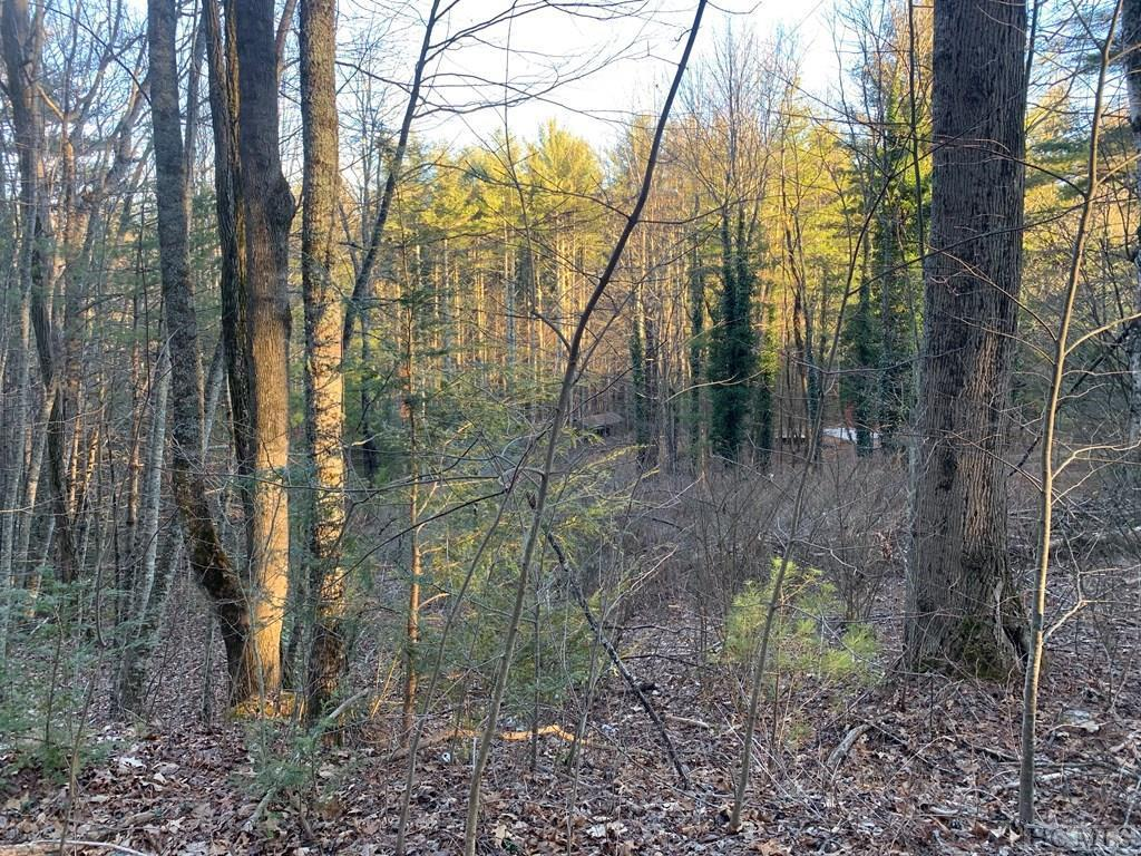 Photo of home for sale at Lot 13 High Meadow Road, Cullowhee NC