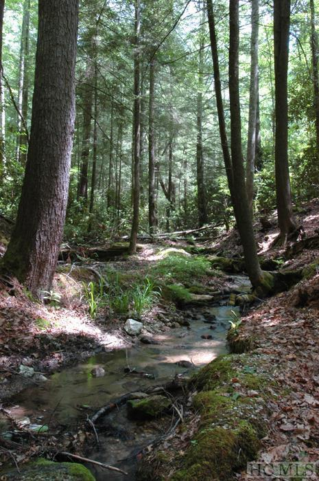 Photo of home for sale at Lot 1A Streamside Drive, Cashiers NC