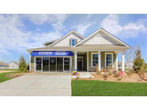Property for sale at 282 Robinwood Lane #260, Lake Wylie,  South Carolina 29710