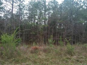 Property for sale at 0 Pleasant Grove Drive, Chester,  South Carolina 29706
