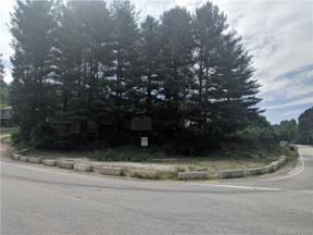 Property for sale at 5 State Highway, Burnsville,  North Carolina 28714