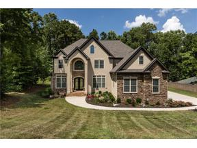 Property for sale at 15111 Davis Trace Drive, Mint Hill,  North Carolina 28227