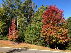 Property for sale at 1300 Reflection Pointe Boulevard #334, Belmont,  North Carolina 28012