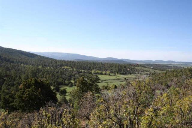 Photo of home for sale at Elk Hill Road, Ponderosa, Chama NM
