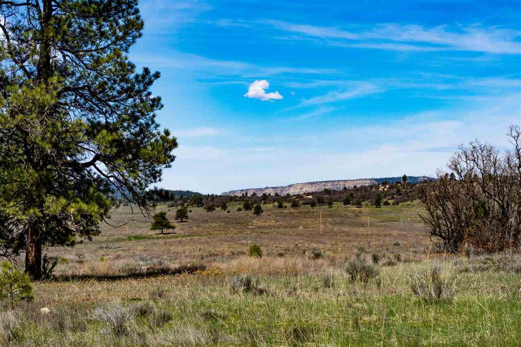 Photo of home for sale at Blk 4, Lot 1 Deer Trail, Chama NM