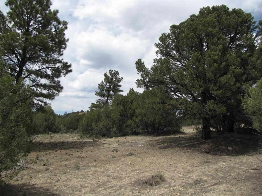 Photo of home for sale at Lots 17 & 18, Parkview Hills, Chama NM
