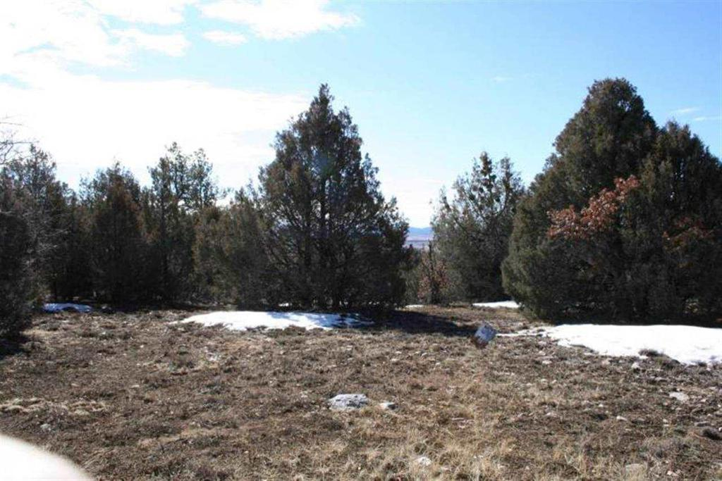 Photo of home for sale at Lakeview Dr. Ponderosa, Chama NM
