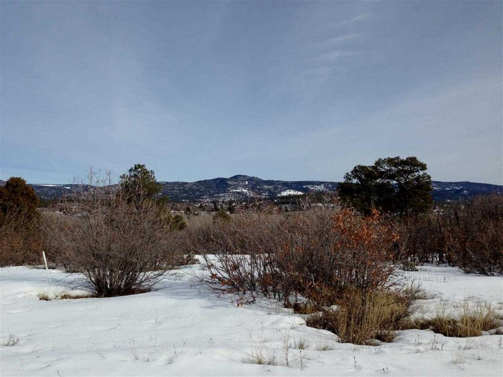 Photo of home for sale at Lot 19 Dos Rios Drive, Chama NM
