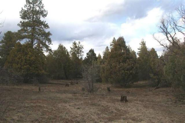 Photo of home for sale at Doe Rim Loop, Chama NM