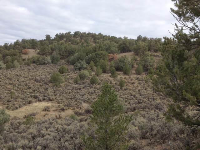 Photo of home for sale at Unit 4 Lot 39 A Talavera S/D, Tierra Amarilla NM