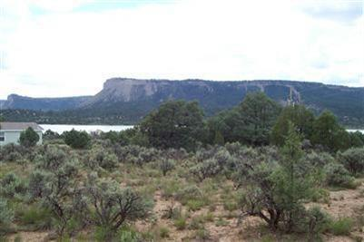 Photo of home for sale at Pinon Ridge Rd, Los Ojos NM