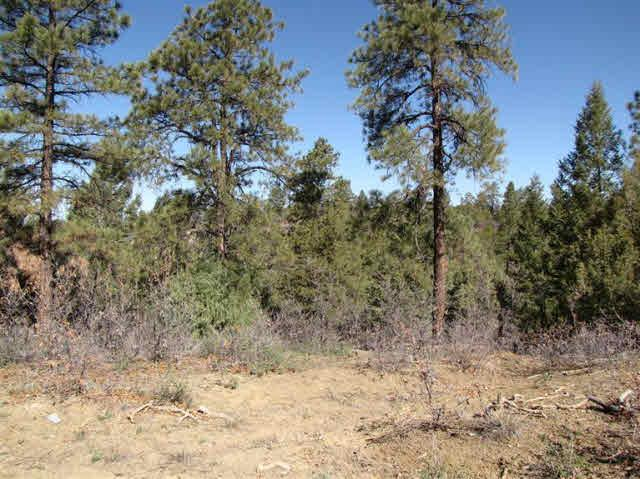 Photo of home for sale at Rd 1781, Chama NM