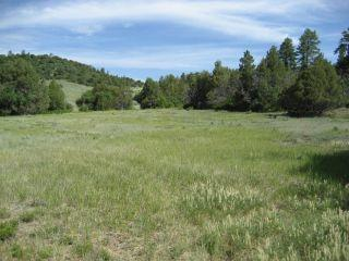 Photo of home for sale at Unit 6, Tract 13 Ponderosa, Chama NM