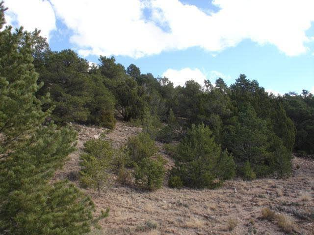 Photo of home for sale at lot 236 lake view court, Sandia Knolls NM