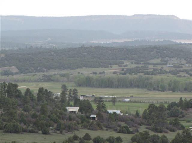 Photo of home for sale at U-7, T-18, Ponderosa S/D, Chama NM