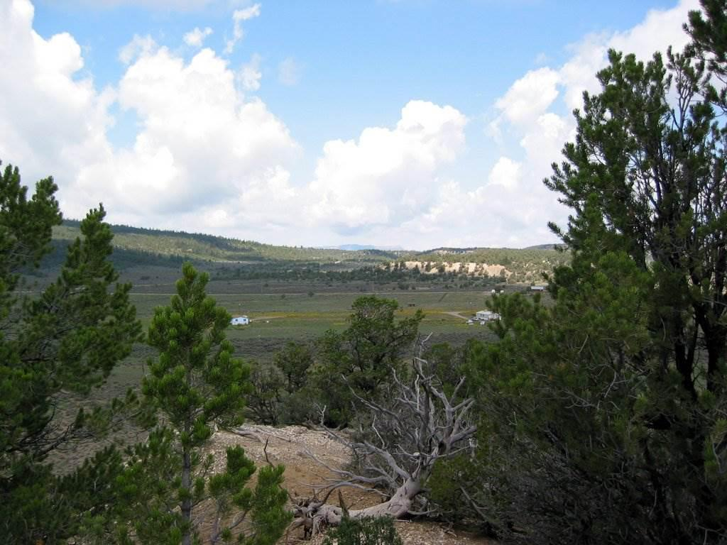Photo of home for sale at Unit 1, TR 163, El Vado Lake S/D, Chama NM