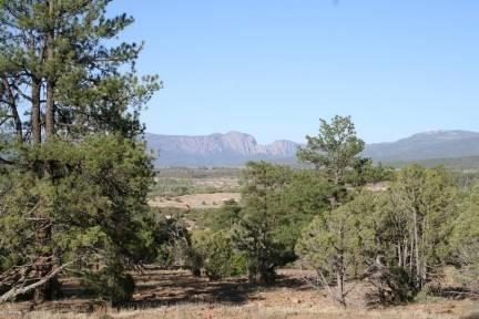 Photo of home for sale at Vista De Heron, Chama NM
