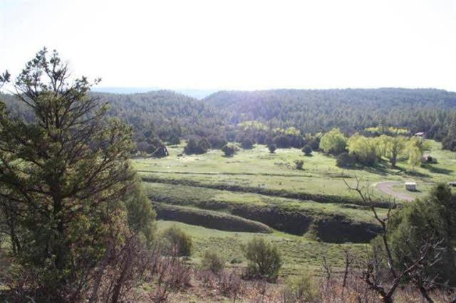 Photo of home for sale at Off Arroyo Hondo Ponderosa, Chama NM