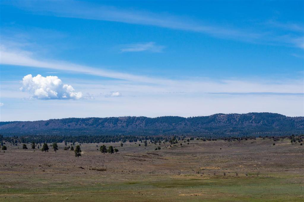 Photo of home for sale at BLK 2, Lot 15 Bison Lane, Chama NM