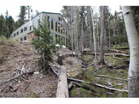 Property for sale at 1 Deer Creek, Mount Charleston,  Nevada 89124