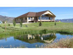 Property for sale at 9470 North Steptoe Bench Road, Ely,  Nevada 89301
