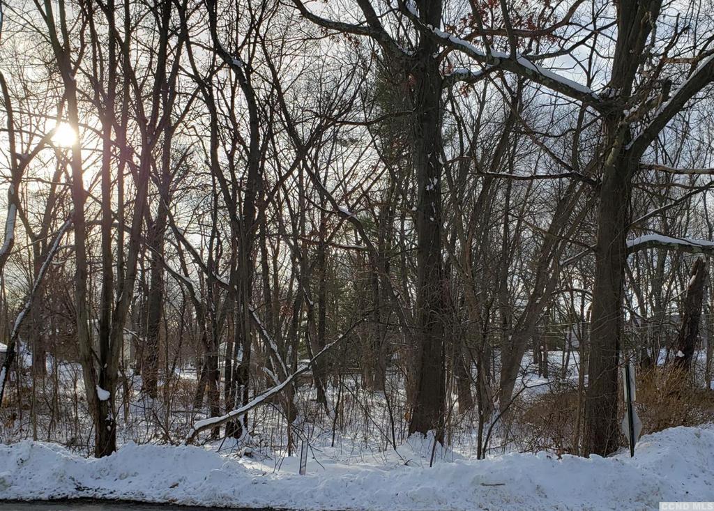 0 Lakeview Road Copake NY 12516