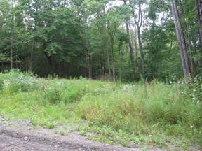 Property for sale at 0 Two Rod Road, Hammondsport,  New York 14840
