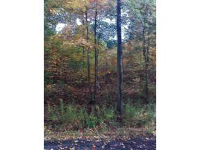 Property for sale at 161 Scott Rd. Lot 2, Painted Post,  New York 14870