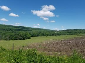 Property for sale at 90 Stitts Hill Rd, Horseheads,  New York 14872