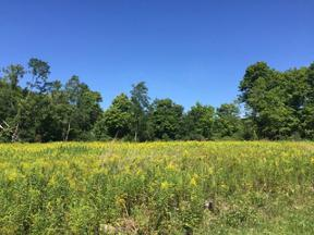 Property for sale at 0 (128a) Federal Rd., Lowman,  New York 14901