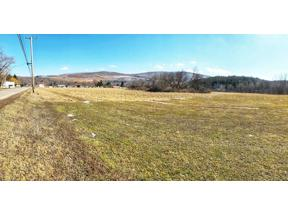 Property for sale at 0 Route 287, Tioga,  Pennsylvania 16946