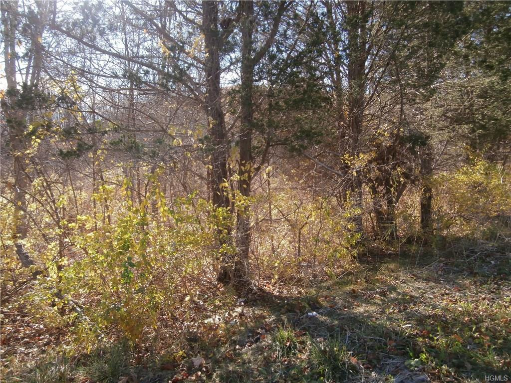 Photo of home for sale at Route 52 (114.34 acres) Road, Fishkill NY