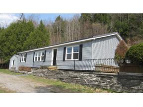 Property for sale at 155 Huckleberry Brook Road, Margaretville,  New York 12455