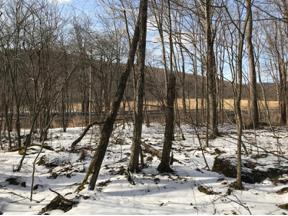 Property for sale at 0 County Route 6, Margaretville,  New York 12455