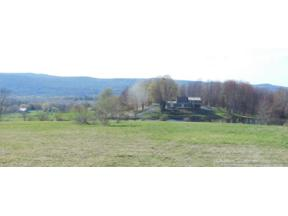 Property for sale at 1650 State Highway 357, Sidney,  New York 13838