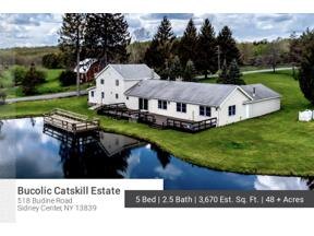 Property for sale at 518 Budine Road, Sidney,  New York 13839