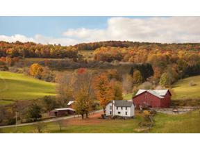 Property for sale at 280 West Peakes Brook Road, Meredith,  New York 13753