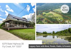 Property for sale at 6379 State Highway 28, Otsego,  New York 13337