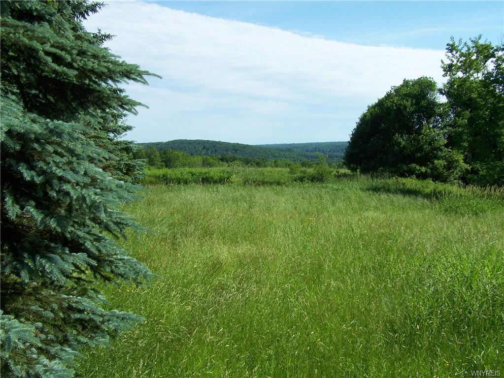 Photo of home for sale at 24 Acres Murray Hill Road, Colden NY