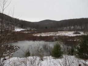 Property for sale at 0 Art Line Rd, Olean-town,  New York 14760